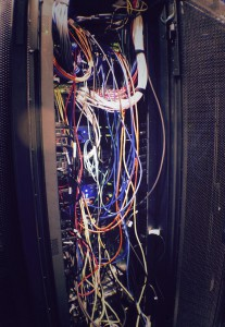 rats_nest